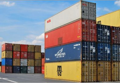 Structura si teoriile reglementarii comertului international